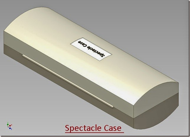 Spectacle Case _2