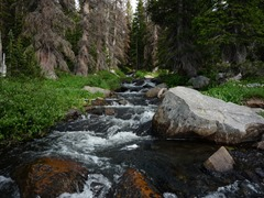 Gorgeous area. This stream fed a small, secluded lake.