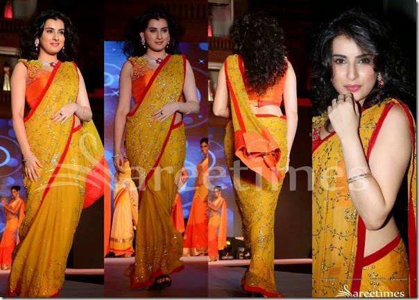 Archana_Yellow_Embroidery_Saree