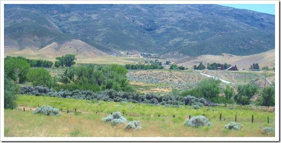 leona-valley-california1