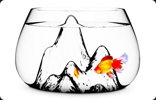 fishscape_fishbowl_aruliden_2b