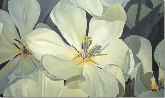 Tulipa purísima