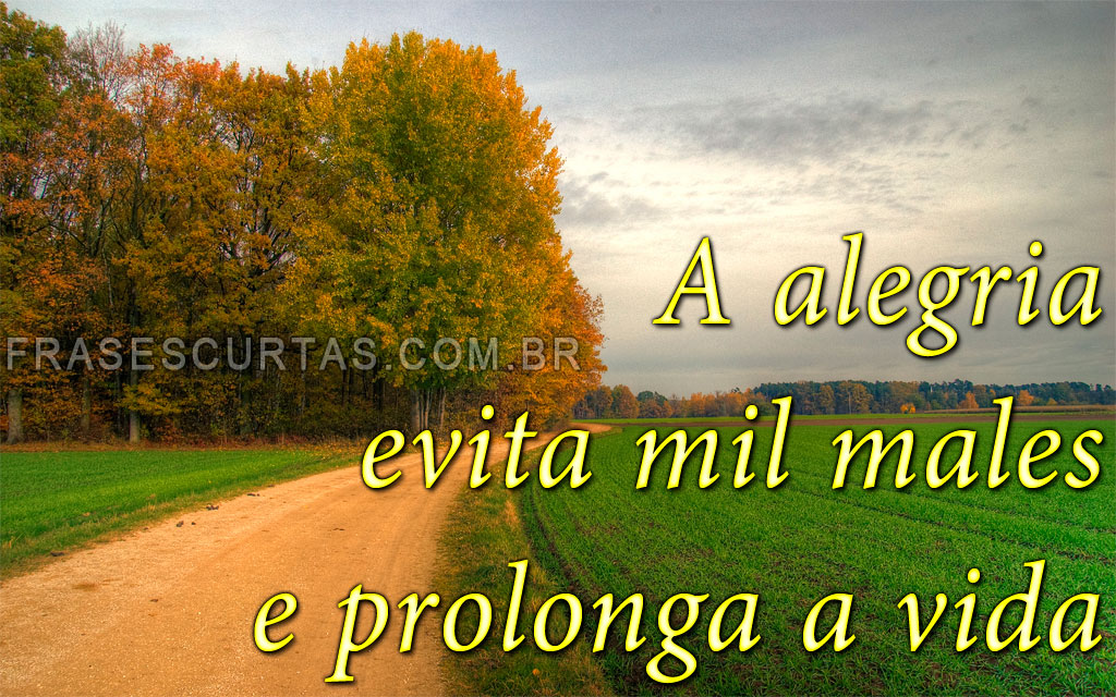 Frases De Reflexao Da Vida Quotes Links