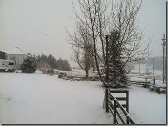 Photo Dec 03, 11 26 16 AM