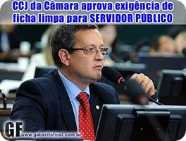 ficha limpa2