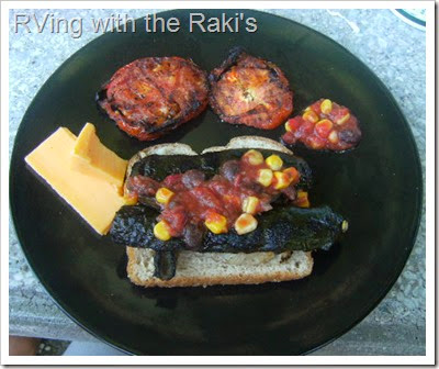 Grilling some fish and vegetables at the local rest stop is a quick and delicious way to save some money on a road trip. Fish, zucchini, squash, tomatoes and mushrooms RVing with the Raki's