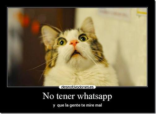 humot whatsapp cosasdivertidas (3)
