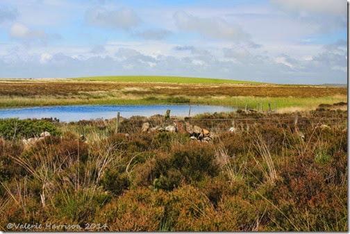 9-Glenwhan-Moor