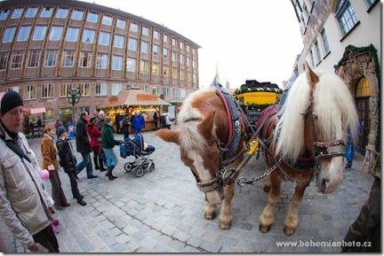 Рождество в Нюрнберге- Лошадки