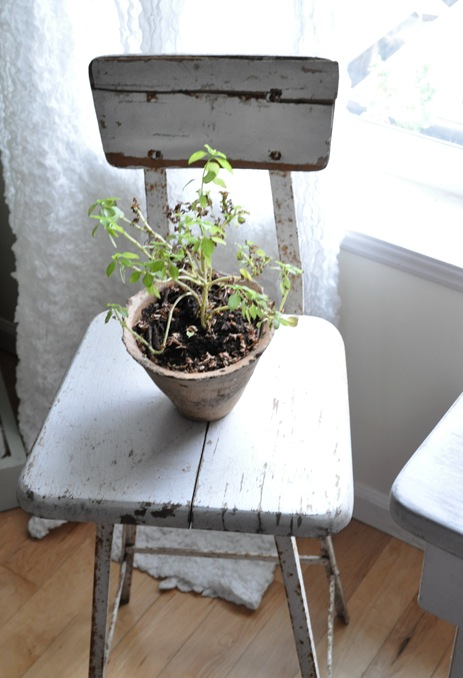 stool plant stand