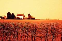 Farm-Life-15---XPRO