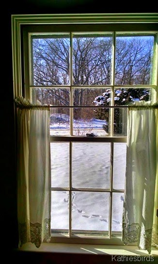 13. cottage window 1-26-15