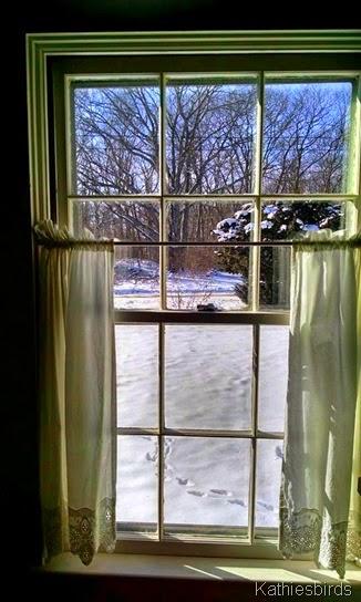 13. cottage window 1-26-15
