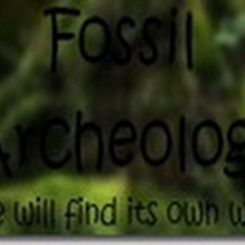 Minecraft 1.3.2 - Fossil Archeology Mod (Dinosauri)