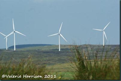 2-wind-farm