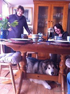 Maureen, Munson & Johanna