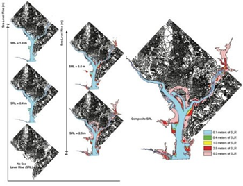 Inundation resulting from 0.1 meter (m), 0.4 m, 1.0 m, 2.5 m, and 5.0 m of sea level rise in Washington, D.C. (left maps); and a composite on right map. Risk Analysis