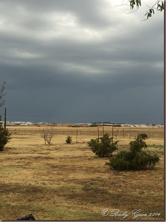 05-22-14 rain 5