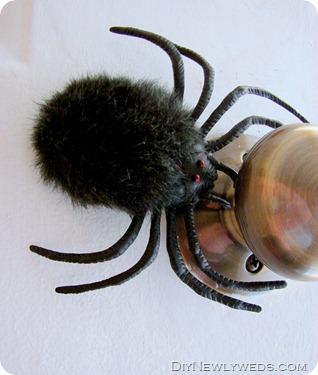 spider-door-knob