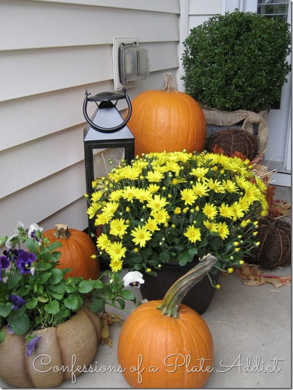 CONFESSIONS OF A PLATE ADDICT Pumpkins on Porch