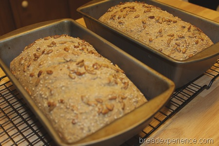 seeded-oat-bread 0044