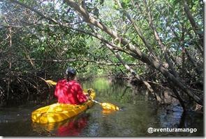 Caiaque no Rio Catu 3