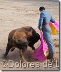 ©Dolores de Lara (31)