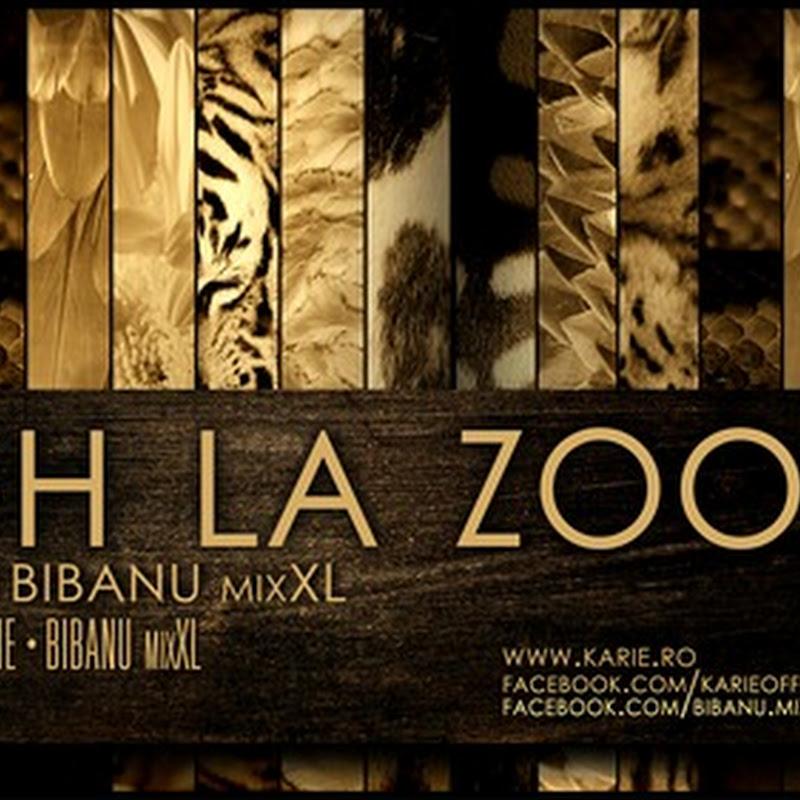 Karie cu Bibanu MixXL - High la Zoo