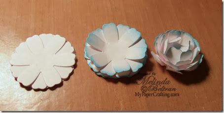 flower set2-450
