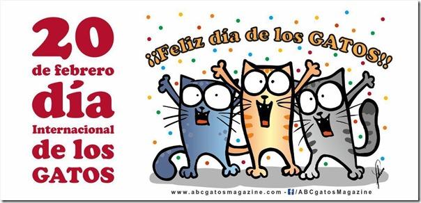 dia de los gatos 3