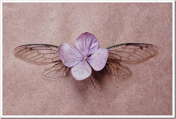 cicada hydrangea 3