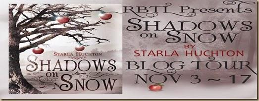 Shawdows on snow banner