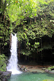 Tropical Beauty At Emerald Pool - Roseau, Dominica