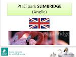 Slimbridge Park Anglie