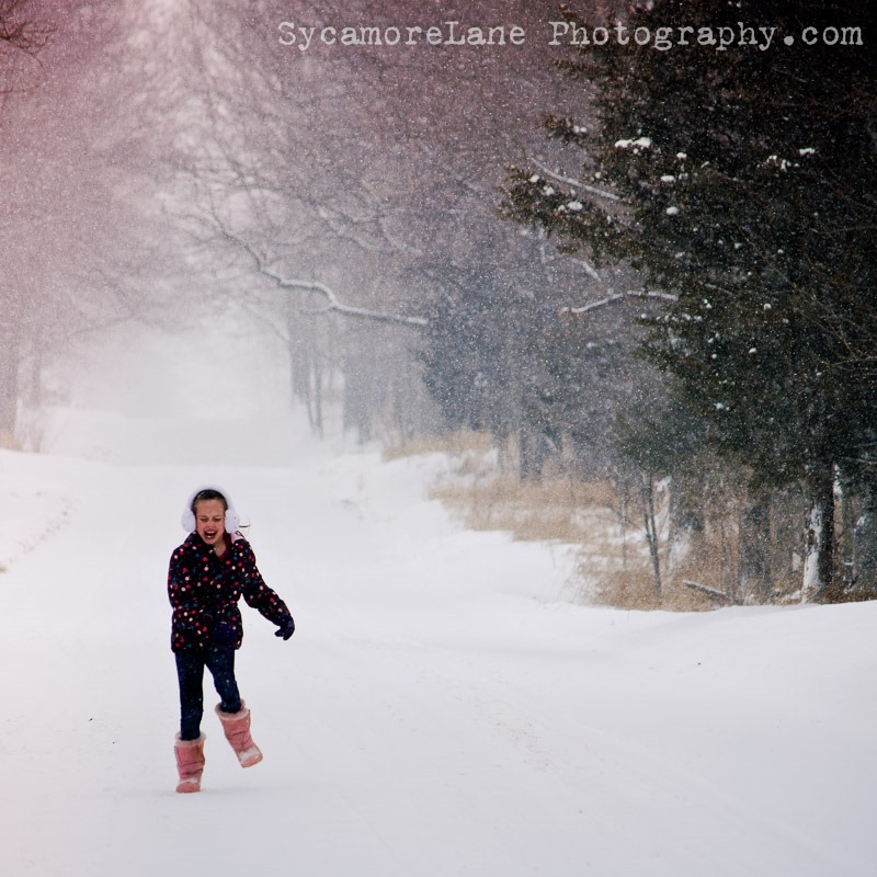 SycamoreLane Photography--snow