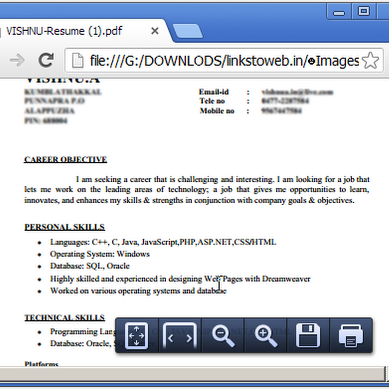 Google-Chrome-PDF-reader