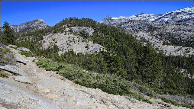 On 19 February 2015, the NWS office in Hanford, CA, tweeted this photo of a nearly snowless landscape, taken in Yosemite National Park at an elevation of 8,100 feet. Photo: Elizabeth Christie