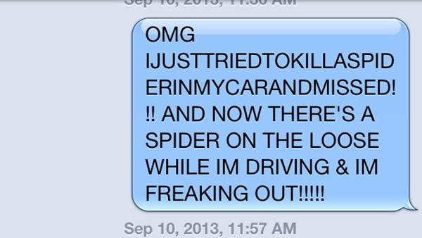 Spider Text