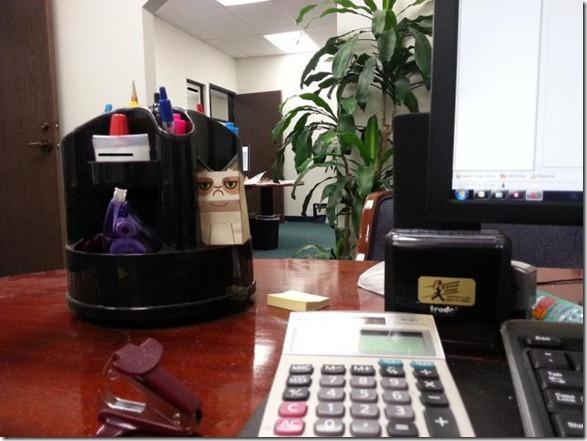 grumpy-cat-office-14