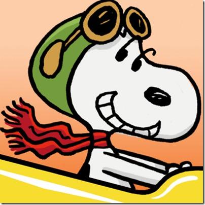 Snoopy coaster 13