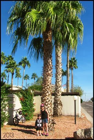 girls palm tree
