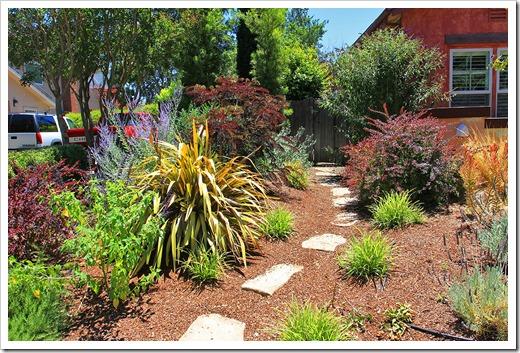 130627_SoDavis_fy_landscaping_15