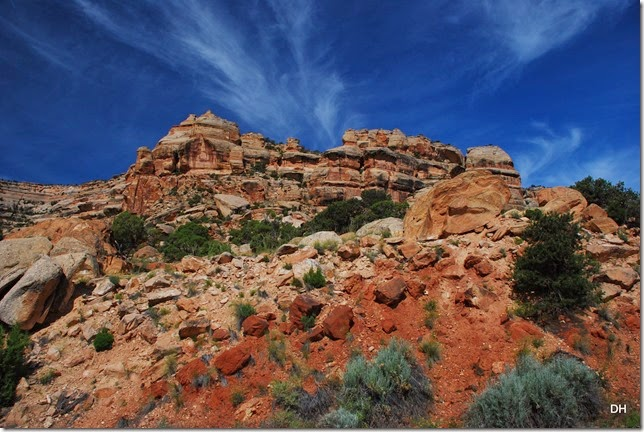 06-02-14 A Colorado National Monument (27)