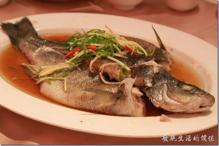 花蓮-理想大地渡假村中餐廳。樹子貴妃魚,NT160。這就是讓我們等了一個半小時的蒸貴妃魚,可是魚肉有點硬耶,感覺是似乎沒有完全蒸熟的樣子,而且也沒有「樹子」的塩味,所以吃不太出來魚的鮮味,還好之前雞肉的辣椒沾醬還在,加了辣椒之後提了味總算比較可以下肚。