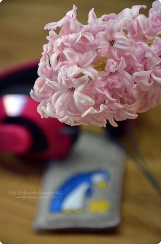 Hülle iPhone 5S Filz Anja Riegers Pinguin mit Stern