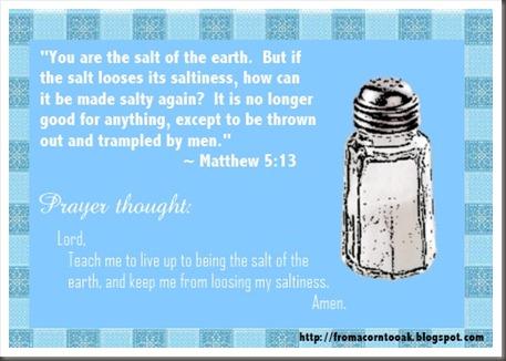 Matthew 5v13 (Saltiness)