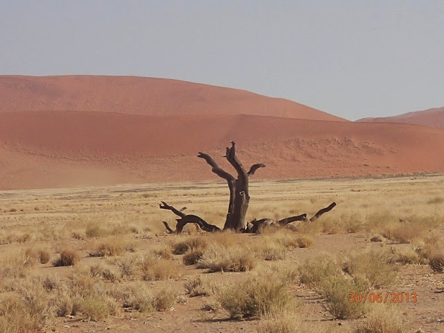Sossusvl ei Dunes 026.JPG