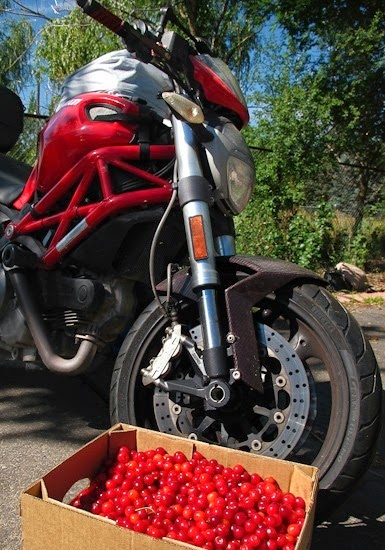 Montmorency Cherries with Ducati 696
