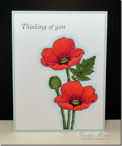 poppies-thinking-of-you