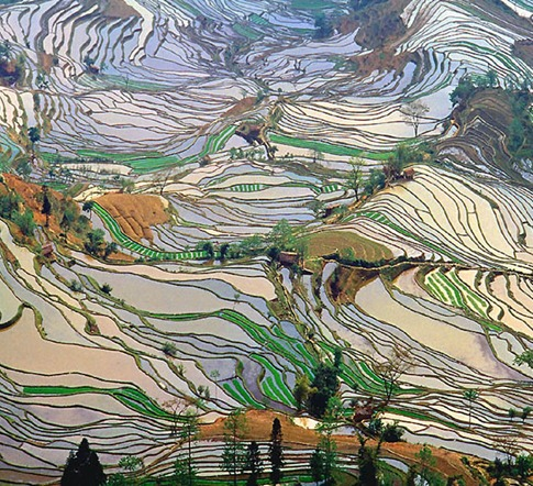 Terrace rice fields in Yunnan Province, China – shot 2.